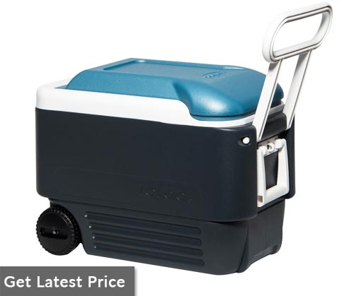 Igloo Maxcold Cooler