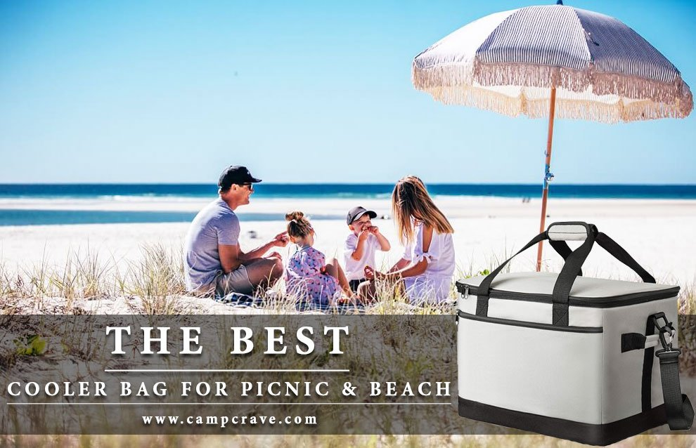 The 10 Best Cooler Bag for Picnic & Beach
